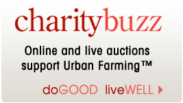 Charity Buzz Auctions